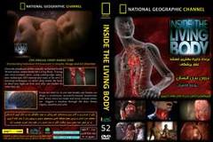 مستند فوق العاده درون بدن انسان (iranpros) Tags: فوق العاده انسان بدن مستند درون کالبدشکافی اعضایبدن سفربهدرونبدن فیلمواقعیکالبدشکافی مستنددرونبدن مستندفوقالعادهدرونبدنانسان
