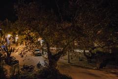 (Psinthos.Net) Tags: road trees winter leaves car night spring december nightlights cross pavement chapel sidewalk stonewall treebranches paved eucalypts christmasornaments planetree saintnicolas leavs  agiosnikolaos   vrisi   agiosnikolas psinthos                        vrisiarea   vrisipsinthos