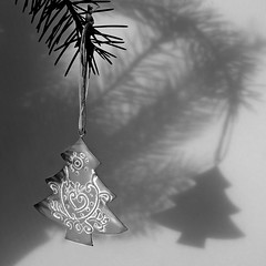 PC053396 5/24 tree on a tree (sarasocke) Tags: christmas blackandwhite tree weihnachten advent decoration ornament baum schwarzweis