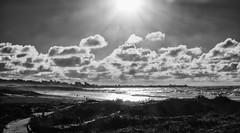 l i q u i d    m e t a l (nosha) Tags: ocean california ca sea seascape beautiful beauty metal landscape coast pacific shore pacificgrove liquid nosha liquidmetaldays