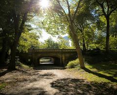 "Central Park, NYC. ""Happy Flare Friday"" (vcostanz) Tags: centralpark nyc bridge park sun sunburst flarefriday sunflare flare path sunlight light brightlight bright overpass centralparkmanhattan manhattan archbridge publicpark newyorkcity"