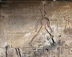 Abydos, Temple of Sety I, First Hypostyle Hall (kairoinfo4u) Tags: abydos templeofsetyi ramessesii egypt égypte egitto egipto ägypten setii