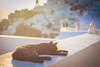 Sunset in Santorini, Greece (Ravinson's Photography) Tags: santorini sunsetinsantorini romaticdestination romanticsunset greece bluedome orthodoxcathedral orthodoxchurch restaurantsinsantorini amazing view