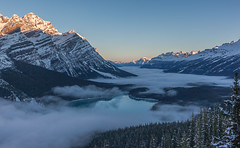 First Light At Peyto (jim peterson2012) Tags: peytolake canadianrockies icefieldparkway banffnationalpark fog