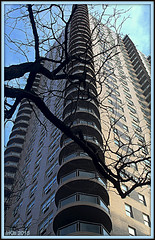 Steps for Giants (Irina Kiseleva) Tags: composition window tree ny manhattan sky cloud repetition color blue black beige photoborder building geometric architecture 1001nights