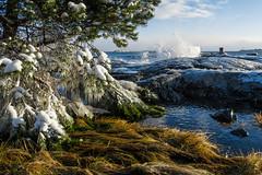 IMG_5273_LR_M (cls-70) Tags: oskarshamn vinter winter is ice östersjön balticsea vågor waves högvatten highwater