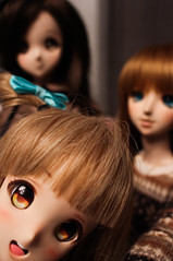 Hiii Kotori-Chan ! (Targuerys) Tags: smartdoll smart doll kotori love live lovelive sd dd cute kotorichan