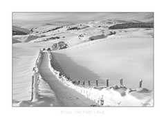 Down The Deep Lane (2395 BW) (The Terry Eve Archive) Tags: snow farm hills access lane drive ngc