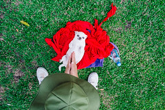 Bangkok, Thailand 2016 (f.d. walker) Tags: asia hcmc hochiminh hochiminhcity saigon vietnam dog dogs animal animals pet people person park pets hand hands gesture clap candidphotography candid color clothes colorphotography contrast colors city grass green red white hat streetphotography street sunlight strange surreal funny feet shoes