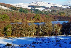 Loch of the Lowes (eric robb niven) Tags: ericrobbniven scotland dunkeld dundee perthshire walking snow landscape lochofthelowes winter