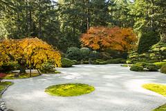 Anglų lietuvių žodynas. Žodis garden rake reiškia sodo grėblys lietuviškai.