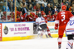 "Missouri Mavericks vs. Allen Americans, March 3, 2017, Silverstein Eye Centers Arena, Independence, Missouri.  Photo: John Howe / Howe Creative Photography • <a style=""font-size:0.8em;"" href=""http://www.flickr.com/photos/134016632@N02/32430577444/"" target=""_blank"">View on Flickr</a>"