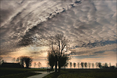 Black  Avenue in Sky (TeunisHaveman) Tags: loppersum landschap avenue