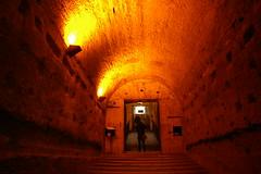 Rome 2010 533