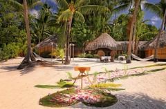 All ready for an Wedding at the Pearl Beach (BoraBoraPhotosVideos) Tags: borabora island paradise southpacific sun beach sunrise amazing dream holydays beautiful bestvacations photooftheday picoftheday photodujour wedding tahiti polynesian edouardott instagood