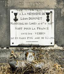 Au cimetière de La Côte-Saint-André (Isère, France) (Denis Trente-Huittessan) Tags: verdun mortpourlafrance côte304 léondupinet 28mars1916 maréchaldeslogisau6erégimentdartillerie