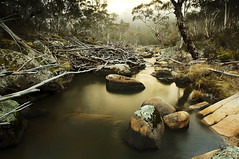 Gudgenby River (Macr1) Tags: camera copyright fog river lens landscape outdoors bush nikon day australia location lee nd subject geography filters act conditions australiancapitalterritory polariser graduatednd d700 nikond700 markmcintosh pcenikkor24mmf35ded macr237gmailcom ©markmcintosh