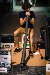 Vuvuzela? (stars`bread) Tags: boy people musician music playing man guy art night artist play arte performance uomo buskers musica instrument ferrara performer notte homme musique artista garon ragazzo artiste jouer 2015 suonare strumento vuvuzela canoneos1000d