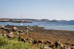 Low tide, Old Grimsby (gwynna) Tags: lowtide scillies scillyisles