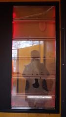 DMC-G2 - P1590209 - 2013-04-10 16-54-12 (archive_diary) Tags: schnbrunn vienna wien portrait selfportrait reflection zoo austria sterreich play framed web spiderweb tunnel bee frame worker chrysalis kran beehive spiegelung glas tiergarten rahmen netz puppe schmetterling biene spielplatz klettern spielen schildkrte palmenhaus fttern pfau arbeiter glasscheibe crysalis rutsche scheibe honigbiene glashaus bienenstock gerahmt fassadenkletterer bienenwabe baumwipfelweg ausderhandfressen 1042013 ifbachwouldhavekeptbees krysalis schaubienenstock