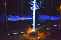 (S. Alexander Gilmour) Tags: show light art forest lights scotland perth enchanted pitlochry