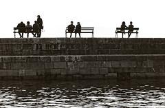 Istuskelijat (luontokuvakauppa.fi) Tags: port marina mediterranean harbour croatia historic oldtown dubrovnik adriatic culturalheritage kroatia balkan dalmatia vanhakaupunki laituri penkki keskiaikainen maailmanperintkohde istuskella istuskelija kulttuuriperintkohde