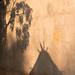 Badian shadows