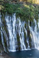 Burney Falls #6 (Califdan) Tags: california statepark park ca water landscape waterfall unitedstates motionblur northamerica westcoast burneyfalls mountainrange geolocation cascademountainrange mcarthurburneyfallssp actionmotion geo:state=california geo:country=unitedstates camera:make=canon exif:make=canon exif:focallength=50mm burneyfallssp exif:aperture=25 mcartherburneyfalls exif:lens=28300mm exif:model=canoneos5dmarkiii camera:model=canoneos5dmarkiii exif:isospeed=100 danhartfordphoto geo:city=mcarthurburneyfallsstatepark shastacascadecaregion geo:lat=41012525 geo:lon=121651405 5d0021906