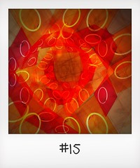 """#DailyPolaroid of 13-10-15 #15 • <a style=""""font-size:0.8em;"""" href=""""http://www.flickr.com/photos/47939785@N05/23213905265/"""" target=""""_blank"""">View on Flickr</a>"""