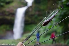 (julius2084) Tags: laos boloven giromondo