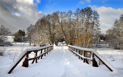 Winterwonderland (AndyW Harz) Tags: snow brücke bridge harz deutschland germany winter
