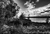 IMG_8515-2 (Forget_me_not49) Tags: alaska alaskan wasilla lakes lucillelake boardwalk pier sunrise waterways