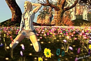 ◄回►Des fleurs et des flammes◄回►