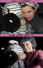 10 Years (evaxebra) Tags: 365days 365 zebra giant remake reenactment copy 10years 10 years 3653 days project old aged gray glasses pink