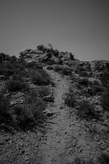 Hiking (tout droit) Tags: hiking wandern alone allein france frankreich corse korsika holiday urlaub coast küste mittelmeer schwarzweis schatten blackandwhite
