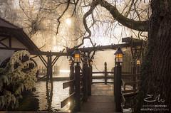 JC_ImageMirrorrer_01012017_31109 (JC | Miroitier d'Emotions) Tags: europapark noël attraction décoration guirlande illuminations lumière manège nouvelleans sapin soir
