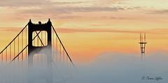 Sunrise over the bridge (funtor) Tags: usa sunrise colors california light bridge fog mist view architecture panorama