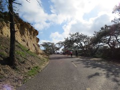Road into Torrey PInes Nature Reserve (aking1) Tags: sandiego california unitedstates
