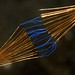 Sparks In Between Wires (Marco Di Ferrante) Tags: macromondays thespaceinbetween olympusom3570 nikon7200 manualfocus macro sparks copper wire