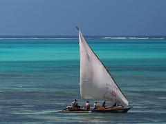 Zanzibar 2015 (hunbille) Tags: boat boats dhow tanzania zanzibar jambiani beach ocean sea
