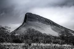 Benbulbin (Pauric Ward) Tags: benbulbin sligo mountains black white 35mm nikon d7200 wild atlantic way wildatlanticway views forest connaught irleand
