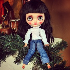 (bauer blue) Tags: blythe blythedoll squeakymonkey cocomicchi