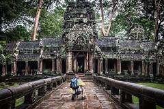Setting Up the Shot (Trent's Pics) Tags: temple ruins cambodia khmer photographer jungle siemreap taprohm settinguptheshot