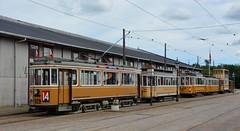 Jystrup, Skjoldenæsholm 11.07.2015 (The STB) Tags: museum tram tramway shs strassenbahn skjoldenæsholm jystrup strasenbahn sporvejsmuseet sporvejshistoriskselskab