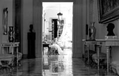 (giampaolomajonchi.it) Tags: travel italy blackwhite sicily palermo reportage palazzodeinormanni leicam6 regionesicilia