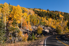Follow the road to the fall foliage