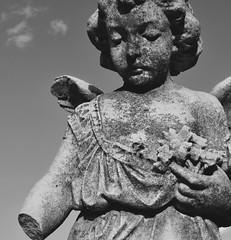 Broken and beautiful (novice_photosbykristen) Tags: broken statue angel sad cemetary