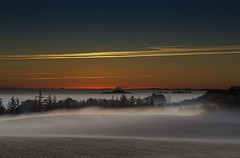 No. 1025 Dawn breaks (H-L-Andersen) Tags: morning autumn trees sky mist colors misty fog sunrise landscape denmark landscapes farming farmland gradient serene manfrotto 6d sindal landoflight canoneos6d hlandersen