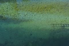 chelle (Yaqine Hamzaoui) Tags: travel blue friends sea green nature water beautiful freedom roadtrip montenegro echelle kotor