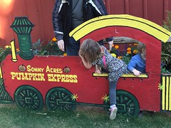 """Paul and Inde in the Sonny Acres Pumpkin Express • <a style=""""font-size:0.8em;"""" href=""""http://www.flickr.com/photos/109120354@N07/22597545193/"""" target=""""_blank"""">View on Flickr</a>"""